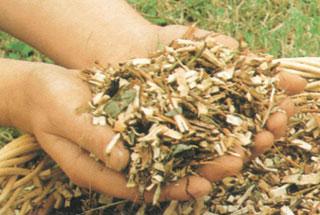 A kert természetes hulladékai komposztba mehetnek