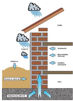 A víz felvételének mechanizmusai az épületeknél