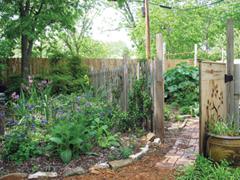 Zöldségeskerti praktikák