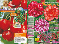 Tavaszi virág és kertészeti katalógus