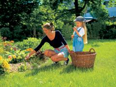 Növényvédelmi tippek