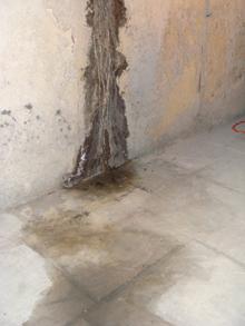 Csőrepedéseknél már a fal száradása közben penészesedés alakulhat ki
