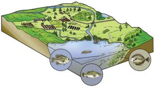 Belvíz akkor is keletkezhet, ha a felszíni vizek nem képesek elvezetni a csapadékot