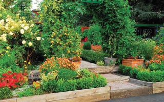 A rendkívül gazdag előkerti növényzetnek díszítő és takaró funkciója is van