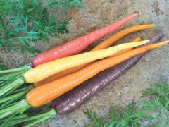 Különleges zöldségnövények