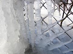 Védekezzünk a fagy ellen még a nagy hidegek beállta előtt