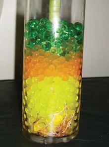 Változatos színű biogél golyók