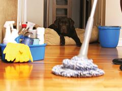 Higiénikus otthon