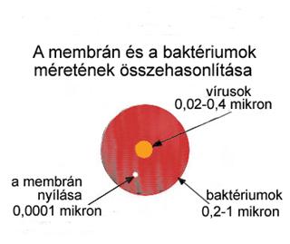 A víztisztító szűrőjének membránján csak a tiszta víz molekulái jutnak át